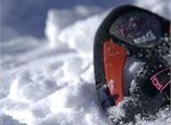 Ciaspolata di due giorni con guida alpina