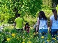 Vivi Tesino: passeggiata a misura di bambino - L'esperto racconta
