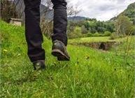 Sulle orme del Biagio - Passeggiata medievale sull'antica Via Claudia Augusta Altinate