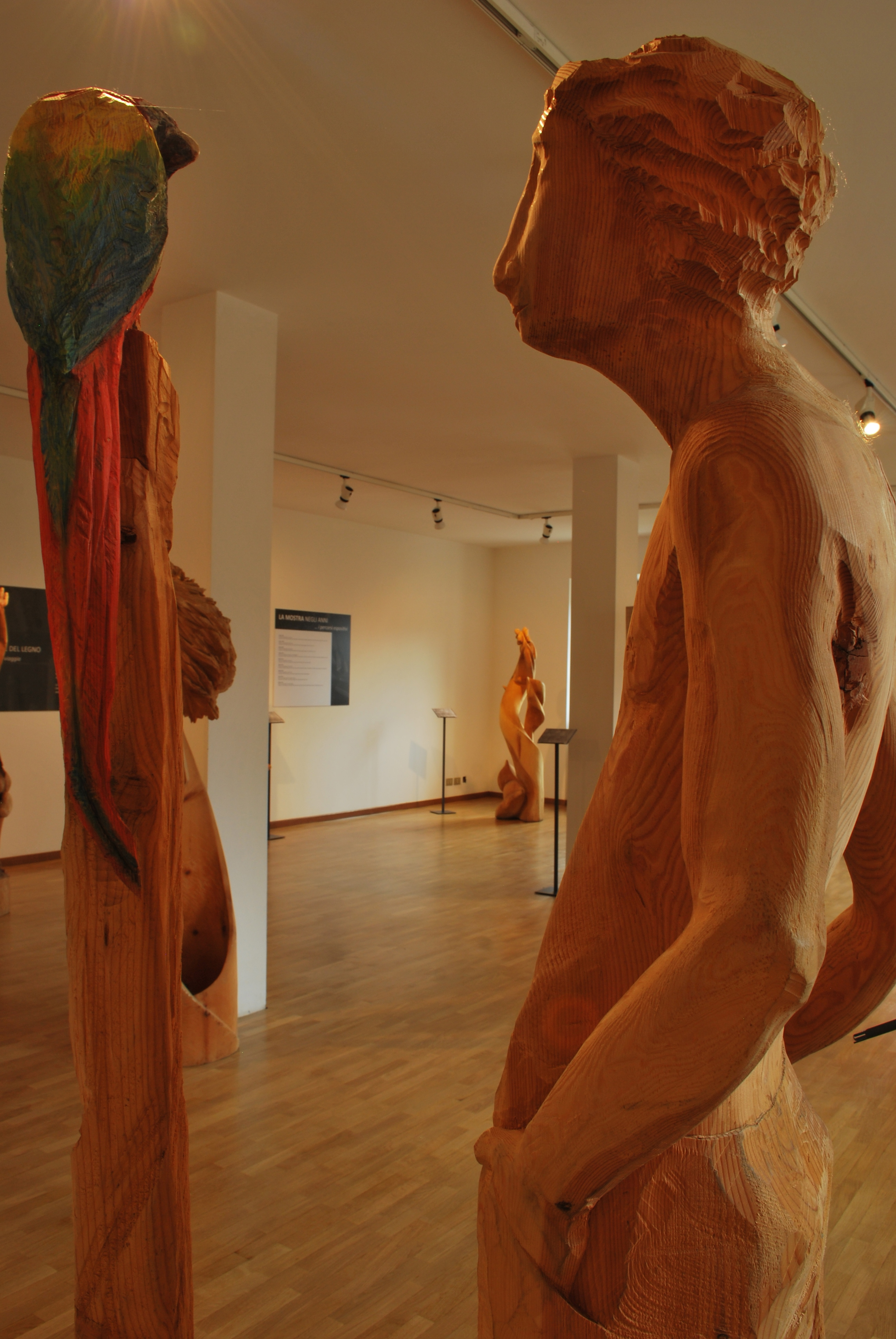 Wood Museum and the museum of contemporary art of wooden sculpture