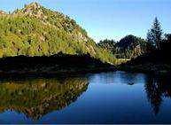 La flora alpina - Trekking con pernottamento a Malga Ezze