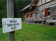 Gli ungulati e il bramito del cervo - Trekking con pernottamento in Oasi - Malga Valtrigona