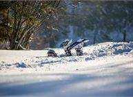 Attività ludico-sportiva invernale