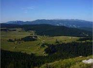 Escursione con pullman agli alpeggi del Vezzena