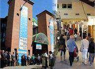 Expo Valsugana e Trentino Cavalli 2015