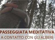 passeggiata meditativa - a contatto con gli alberi