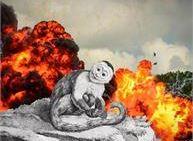 Ebbrezza distruttiva di una scimmia cappuccina - Pergine Festival