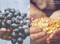 Festival dei Sapori autunnali: uva, mais e cereali