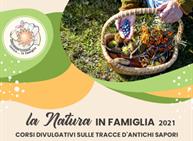 Sulle tracce di antichi sapori - il sambuco