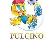 Torneo Pulcino D'Oro