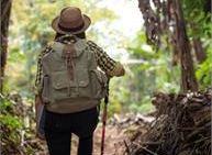 Passeggiate selvatiche