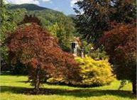 Visita botanica al Parco delle Terme