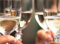 Degustazione di vini Cantina Romanese Levico Terme