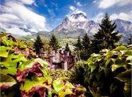 Visita con accompagnatore sul Monte Lefre con Belvedere
